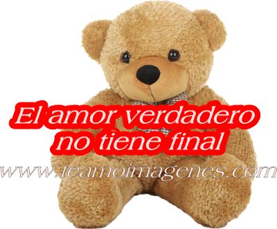el amor verdadero no tiene final