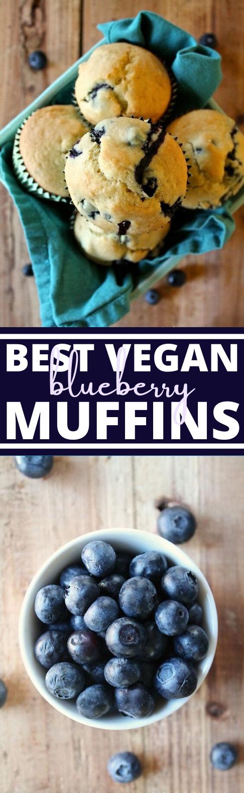 The Best Vegan Blueberry Muffins #vegan #dessert #breakfast #easy #muffin