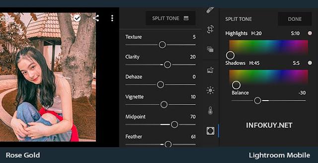 EFFECT & Split Tone - Tutorial Edit Foto Rose Gold Lightroom