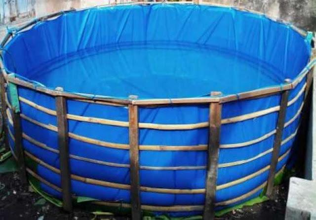 WOW! Ini 4 Kelebihan Kolam Terpal Bulat untuk Budidaya Ikan Air Tawar