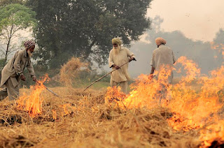 Yellow-orange flames in front of three men in turbans and white clothing. There are trees in the background.
