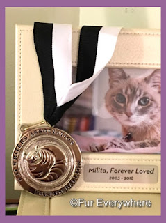I dedicated my Muse Medallion to Angel Lita.