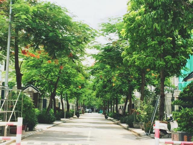 Không gian xanh khu Biệt Thự Dương Nội