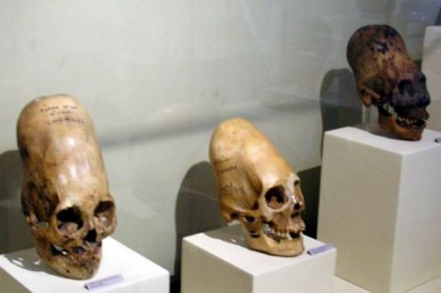 Día del Arqueólogo: conoce a ilustres peruanos investigadores de culturas prehispánicas