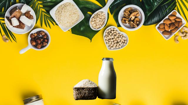 makanan pengganti nasi untuk diet