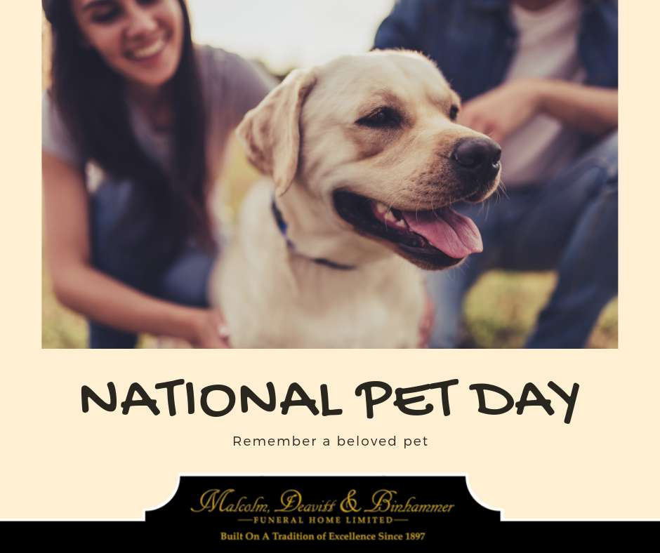 National Pet Day Wishes Beautiful Image