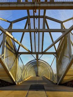 picture of diamond back rattlesnake bridge tucson arizona