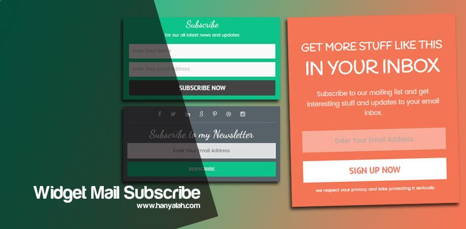 Best Widget Email Subscription Box