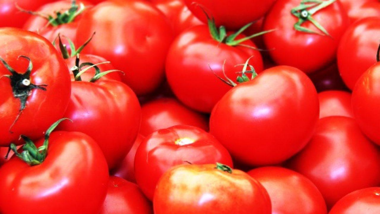 Kenapa Tomat Termasuk Buah dan Bukan Sayur, Bahkan Termasuk Berry?