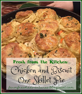 chicken and biscuit one skillet pie recipe