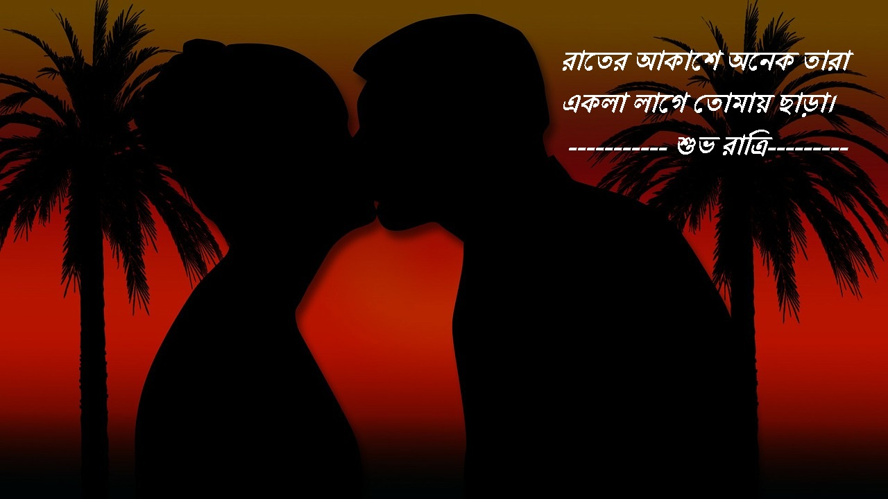 Good Night Image In Bengali Good Night Bengali Image