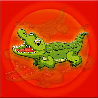 Alligator Escape From Cag…