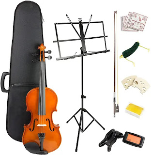 Windsor 4/4 Student Violin