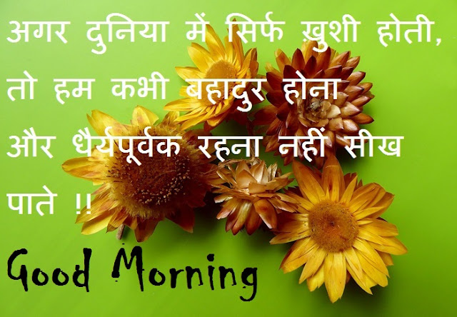 beautiful good morning inspirational quote with image in hindi