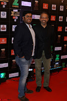 Bollywood Celebrities on the Red Carpet Of Zee Cine Awards 2017 Exclusive 093.JPG