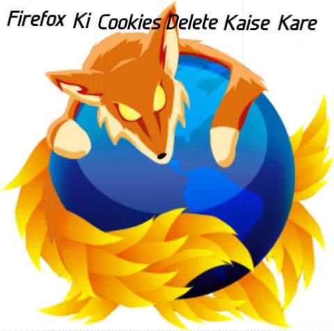 Mozila-Firefox-Ke-Cookies-Delete-Kaise-Kare