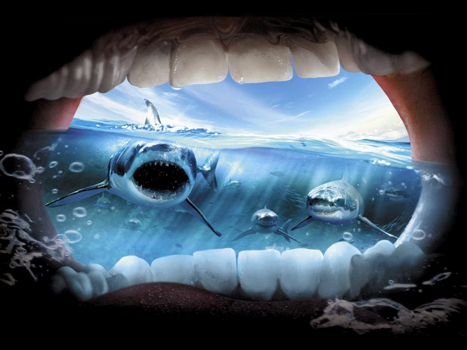 shark-inside-mouth-best-creative-wallpapers-for-sharing.jpg