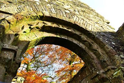 Monaincha Abbey Ruins