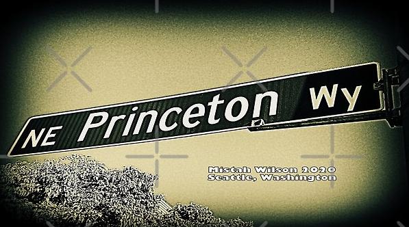 Princeton Way, Seattle, Washington by Mistah Wilson