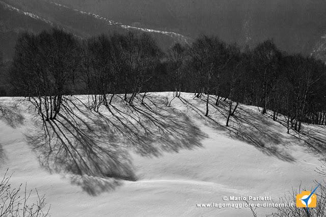 Ombre sulla neve in bianco e nero
