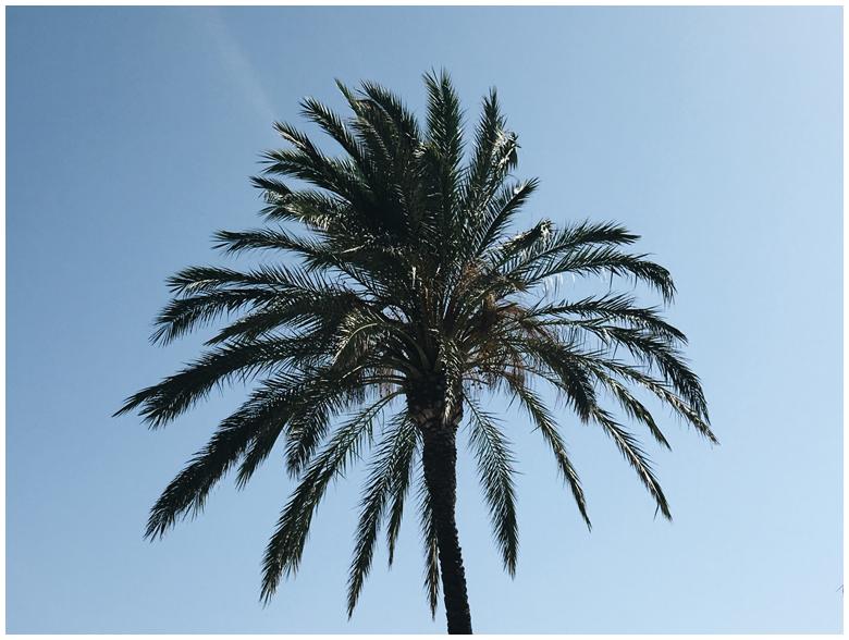 travel diary, spain,Andalusia.conil de la frontera, hotel fuerte conil