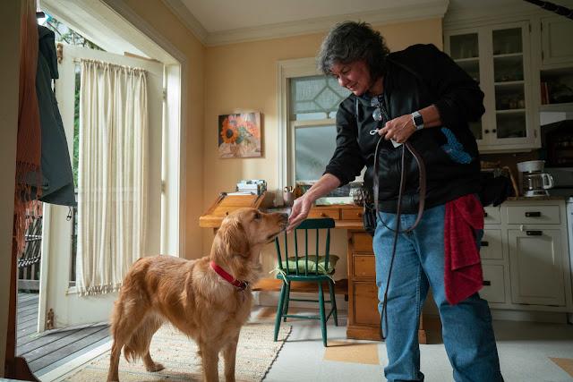 National Dog Week, movies based on books