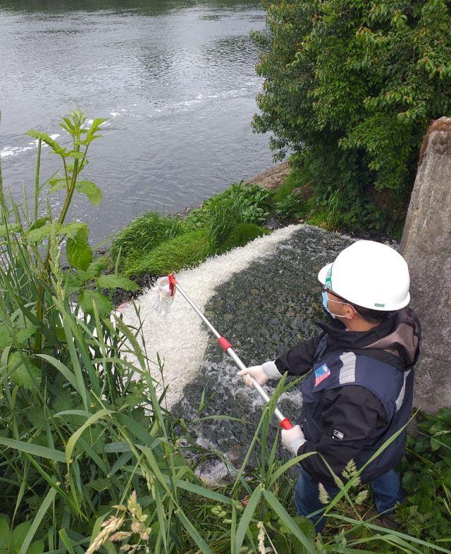 Contaminación río Rahue