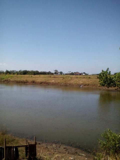 desa-puncel-kecamatan-dukuhseti