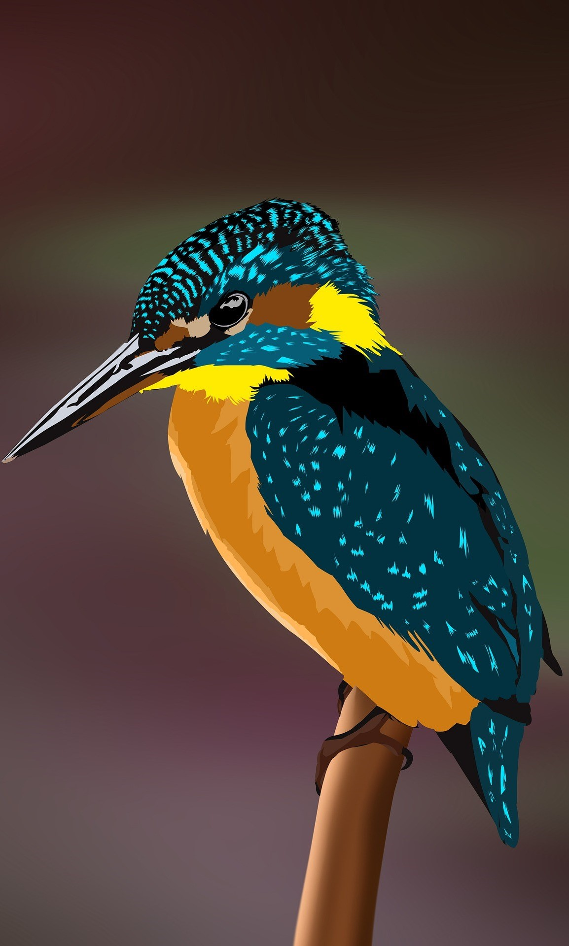 Animated picture of a kingfisher.