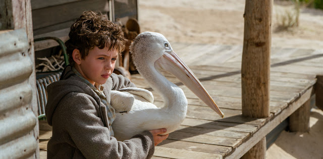Storm Boy: Film Review