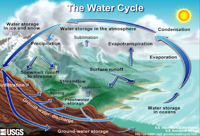 CBSE Class 7 - Geography - Ch5 - Water (Short Q and A)