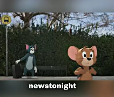 Tom & Jerry's live-action movie releases debut trailer - newstonight