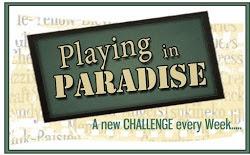 Challenge Winner #66, 100