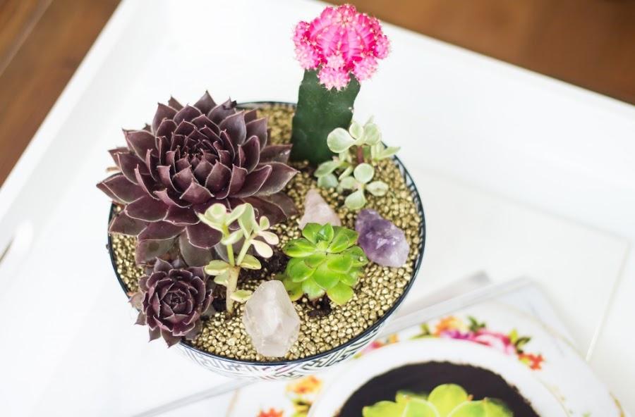 diy-ideas-regalo-dia-madre-jardin-suculentas-cactus