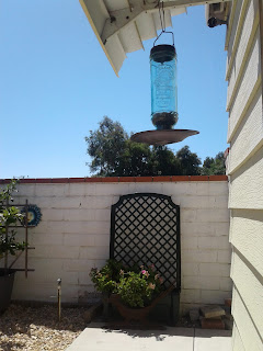 Photo of patio bird feeder hanging from awning
