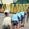 Danrem 141 Brigjen Djashar Berolahraga Bersama Meningkatkan Stamina Serta Daya Imun Tubuh