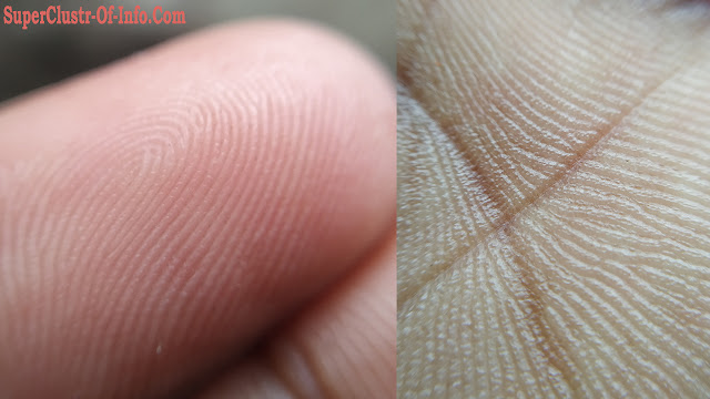 nano-sized virus stays in the fold of the hand