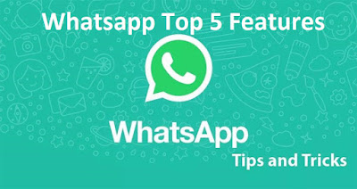 Top 5 Features of Whatsapp 2019 - DigitalPedia