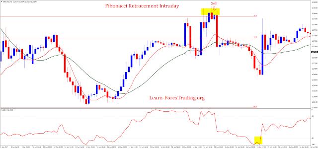 Learn fibonacci trading forex