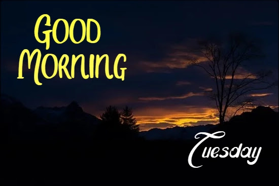 51+ Happy Good Morning Tuesday Images ! HD Photos Download