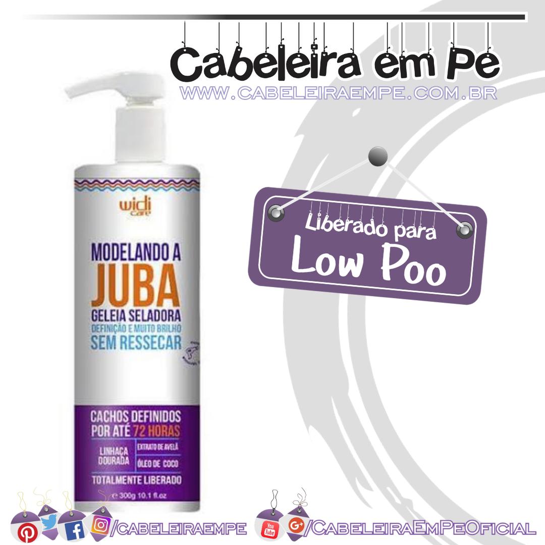 Modelando A Juba Geleia Seladora - Widi Care (No Poo)