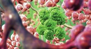 """""""Τέλος οι χημειοθεραπείες""""! Αυτή είναι η νέα μέθοδός καταπολέμησης του καρκίνου…"""