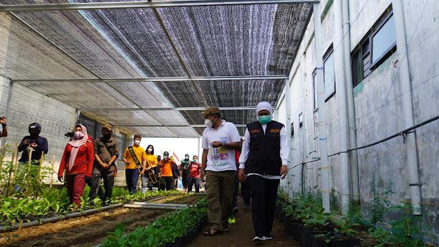 "Mojokerto -- Salah satu upaya untuk bangkit dari dampak pandemi Covid-19 adalah menggerakkan kembali roda perekonomian daerah, yang mana salah satu penggerak perekonomian adalah para pelaku usaha mikro. Pada Minggu (30/8) Gubernur Jawa Timur Khofifah Indar Parawansa berkunjung ke Kota Mojokerto dalam rangka sosialisasi gerakan Jatim Bermasker moment kunjungan ini tentunya dimanfaatkan oleh Wali kota Mojokerto Ika Puspitasari untuk memperkenalkan hasil karya para pelaku usaha mikro yang ada di Kota Mojokerto.  Usai gowes menyapa warga Kota Mojokerto dan membagikan masker, Bertempat di gedung raw material, Khofifah bersama Ning Ita meninjau beberapa program kemandirian pangan yang tengah dijalankan oleh pemerintah Kota Mojokerto yaitu pertanian dan perikanan yang dilakukan dengan organik yang berlanjut ke gedung workshop industri alas kaki.   Bertempat di gedung workshop industri alas kaki, Gubernur Wanita Pertama di Jawa Timur ini melihat secara langsung proses produksi serta hasil karya para pelaku usaha mikro Kota Mojokerto seperti pembuatan masker dan APD, kerajinan bordir dan batik. Produk pangan juga turut menjadi perhatian khofifah seperti frozen food yang diolahdari hasil peternakan dan perikanan organik serta berbagai makanan olahan dari daun kelor dan minuman tradisional.  Dalam kesempatan ini, Ning Ita menyampaikan bahwa para pelaku industri alas kaki yang menjadi andalan di Kota Mojokerto terdampak akibat pandemi covid-19. ""Khususnya terkait UMKM para pengrajin industri alas kaki 100% terdampak kami memberikan pelatihan, ada 23 jenis pelatihan yang kami berikan secara masiv  dimana pelatihan ini adalah transformasi dimana mereka yang berusaha di bidang alas kaki dialihkan kepada usaha lain yang saat ini tidak terdampak seperti makanan, minuman,pembuatan APD dan lainnya.""jelas Ning Ita.   Sebagaimana disampaikan oleh Ning Ita saat membuka pelatihan pembuatan frozen food beberapa waktu yang lalu bahwa pelaku usaha mikro adalah penggerak ekonomi kerakyatan, u"