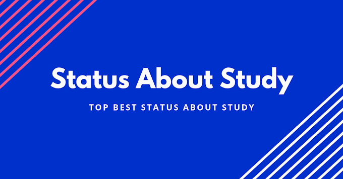 status about study | quotes on study