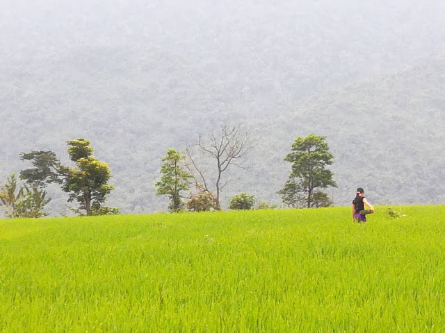 Pu Luong - The Vietnam Northern's microcosm 2