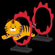 虎の火の輪くぐりのイラスト