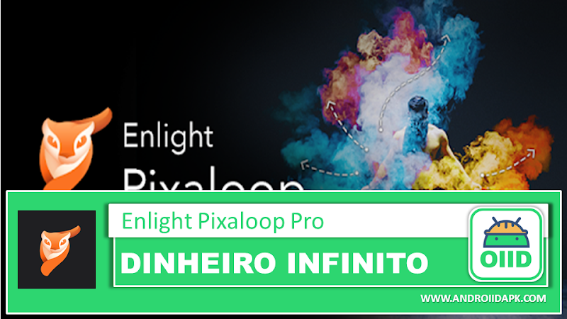 Enlight Pixaloop Pro APK 1.0.29 (MOD Unlocked All)
