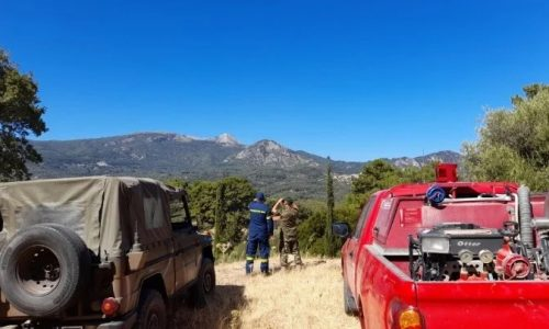 Στις επικίνδυνες περιοχές, στις κορυφές βουνών και σε δάση περιπολούν για τουλάχιστον 7 ημέρες στρατιώτες, αστυνομικοί, πυροσβέστες και στελέχη της Πολιτικής Προστασίας.
