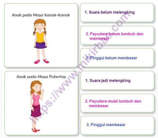 Pubertas Wanita