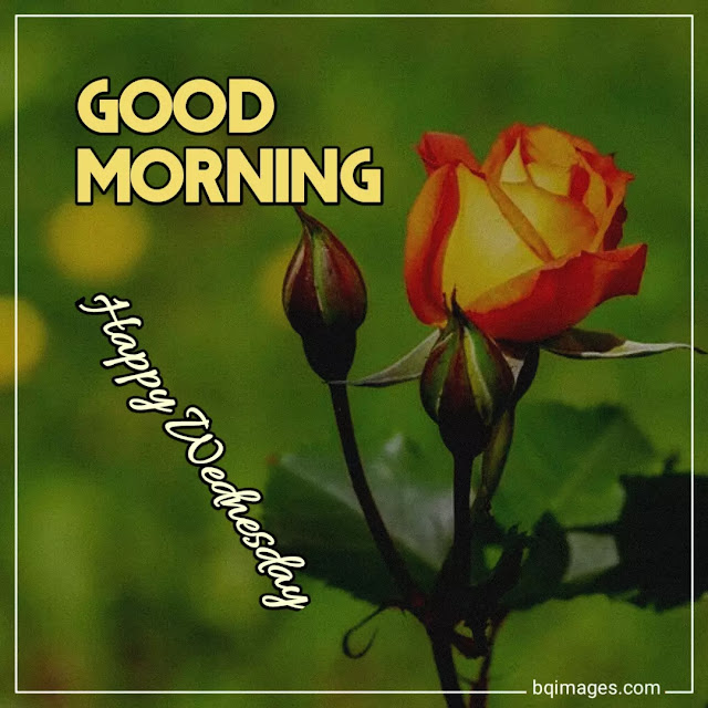 wednesday good morning images download